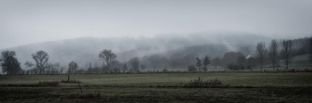 Ruhrwiesen im Nebel