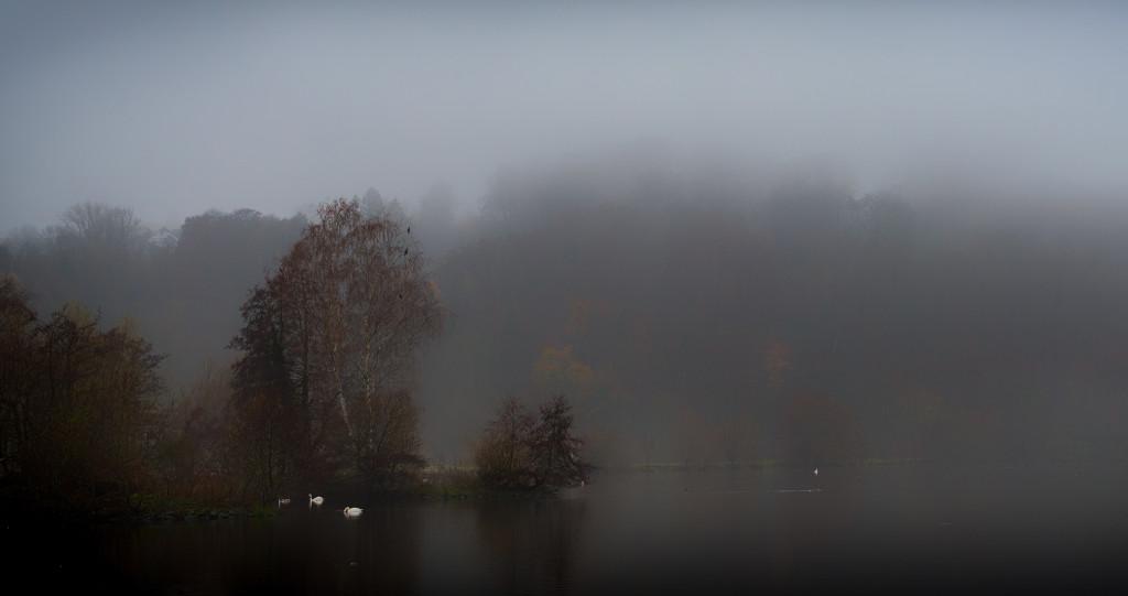 Ruhrufer unter Blankenstein